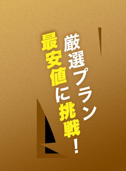 厳選プラン最安値に挑戦!
