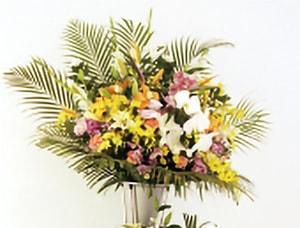 生花の写真