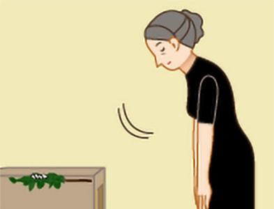 玉串奉奠の作法|手順6
