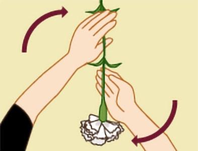 玉串奉奠の作法|手順3