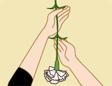 玉串奉奠の作法|手順4